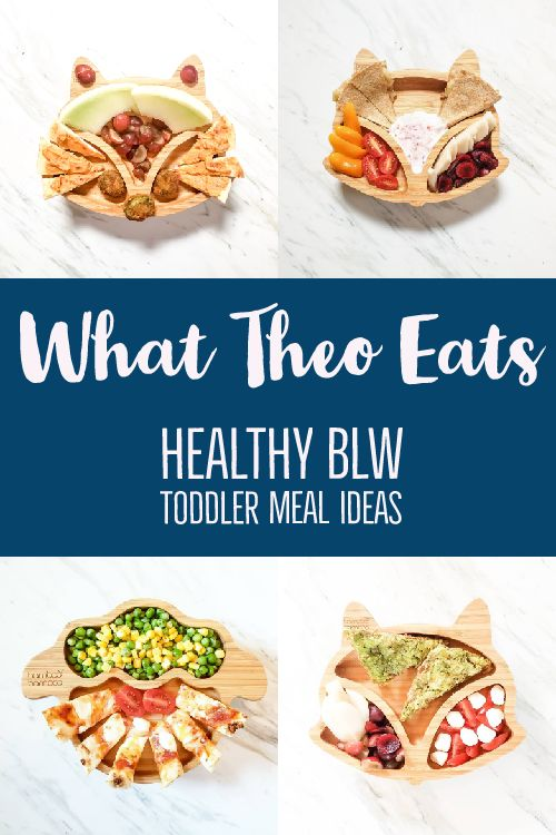 This is what my son eats. BLW meal ideas that include animal shaped plates. Each plate contains a different meal that is featured in the post. There is text in the middle with a blue background.