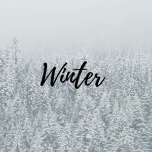 Comforting Winter Recipes